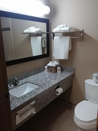 Super 8 Edmonton/West: Bathroom