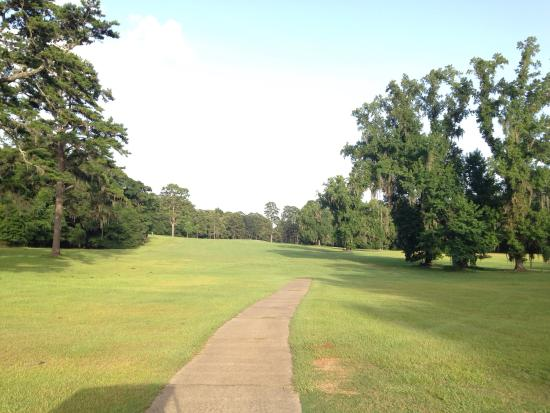 Marianna, FL: Great value at $16 with cart! The scenery is beautiful with the course surrounded by old oak tre