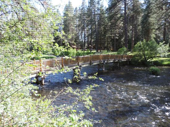 Metolious River Lodges : View out the bedroom window