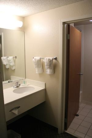 Comfort Inn & Suites Dalton: Sink area, outside the actual bathroom