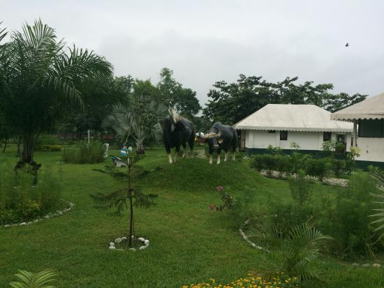 Resort Murti: view of the cottages