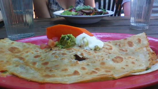 Duck Brand Hotel and Cantina: My duck quesadilla