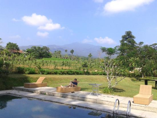 Tea Garden Resort Bandung: Lovely pool surrounding