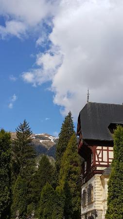 Palacio de Cotroceni: Горы и готика - созданы друг для друга!