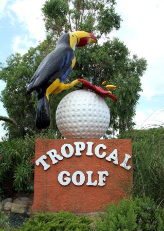 ‪Tropical Golf‬