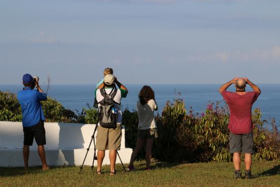 Cristal Ballena Boutique Hotel & Spa: My family and our guide looking out from the hotel gardens!