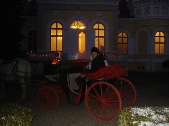Bistrita-Nasaud County, โรมาเนีย: Our Carriage at Dracula Arcalia Castle from Transylvania