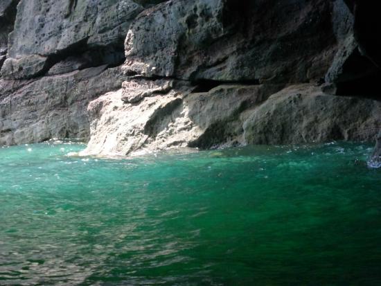 Arbroath Sea Safari: .