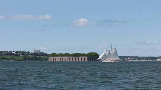 Capt Lyman Stuart, LLC: Schooner crossing Fort Gorges in Portland harbor.