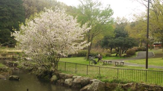 Children's Natural Park