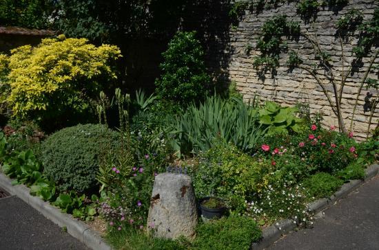 Villa Fleurie : Garden