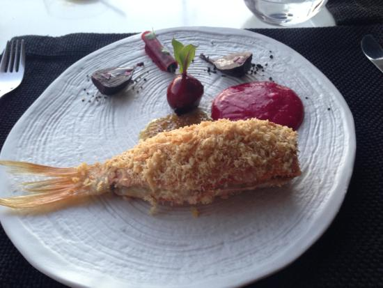 Fish dish picture of bill coo restaurant mykonos for Fish dish menu