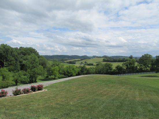 Beechgrove, TN: Beautiful views!