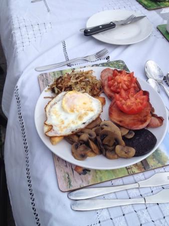 Redhill Grange Bed and Breakfast: Generous breakfast