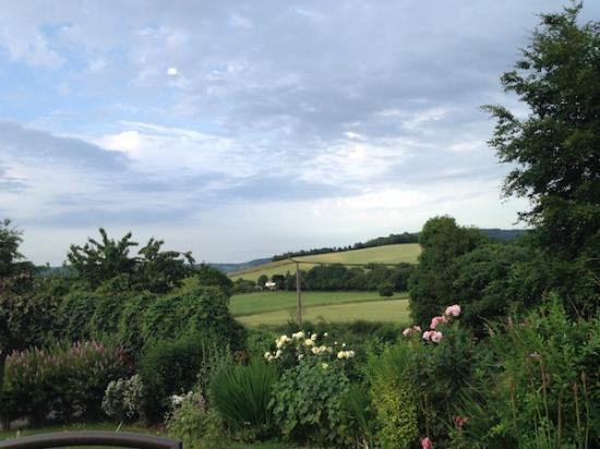 Redhill Grange Bed and Breakfast: What better view to see?