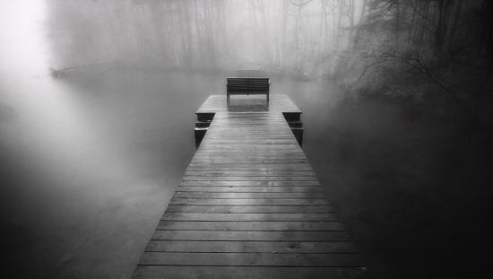 Huntsville, AL: fog on green mountain nature trail