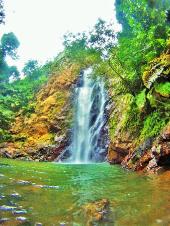 Mai Dive - Astrolabe Reef Resort: Visit The Waterfall...