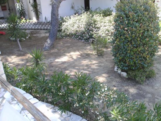 Aquarius Hotel: Wo ist der schöne Rasen aus dem Prospekt?