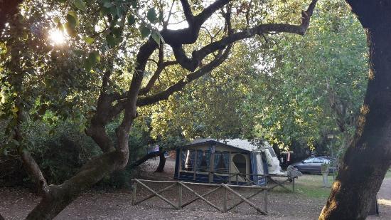 Imagen de Camping Internazionale di Castelfusano
