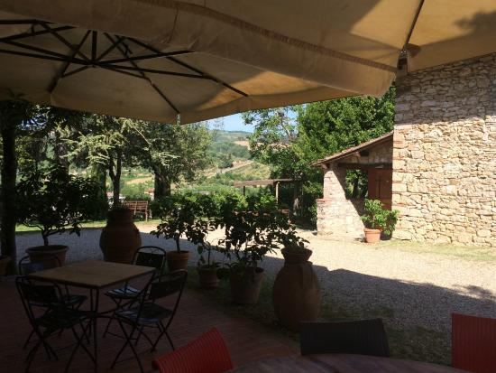 Podere Campriano: The very best place for coffee and a book