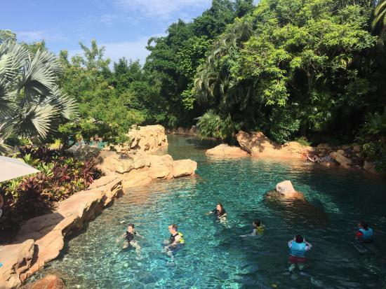 Pool picture of discovery cove orlando tripadvisor for Pool show discovery
