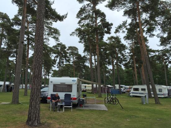 Sandskogens Camping & Stugor