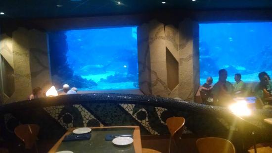Restaurant In Myrtle Beach Corl
