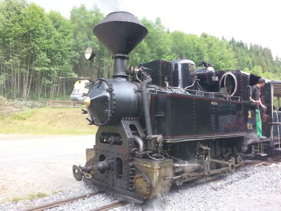 Steam Engine used - Picture of Ciernohorska Zeleznica