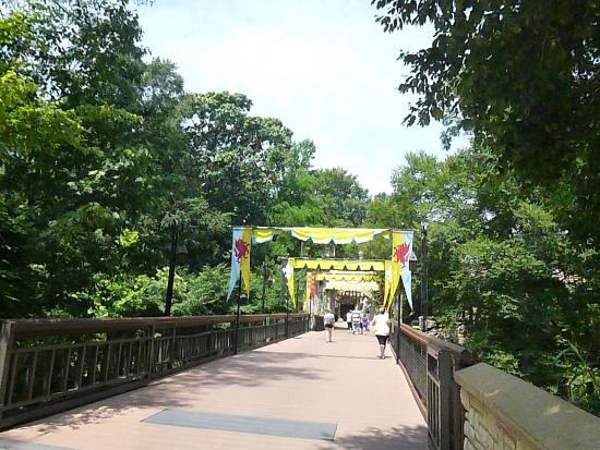 Busch Gardens Williamsburg Guest Relations Phone Number Garden Ftempo