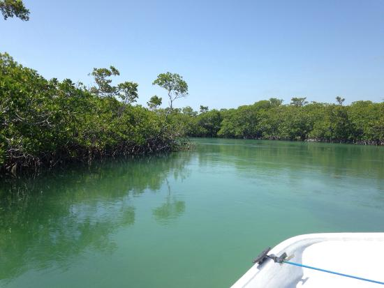 Biscayne National Park, FL: Beautiful water in biscayne bay national park!