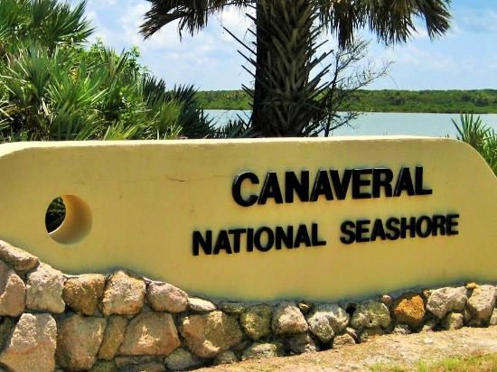 Florida: Canaveral National Seashore