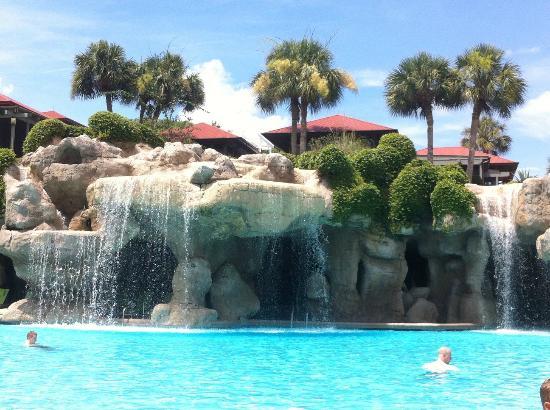 Pool picture of hyatt regency grand cypress orlando for Pool show orlando 2015