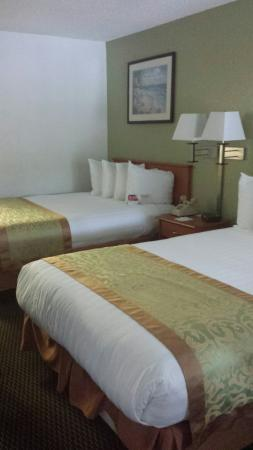 Ramada Temple Terrace/Tampa North: Our rooms upon entry