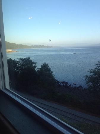 Pirate's Cove Restaurant : View