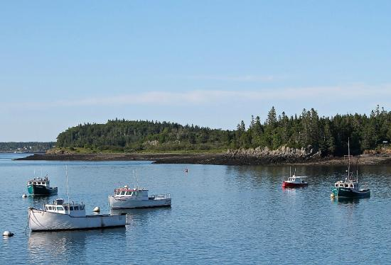Downeast Charter Boat Tours: Lubec Harbor
