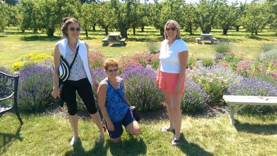 Hood River, Oregón: Lavender & Friends