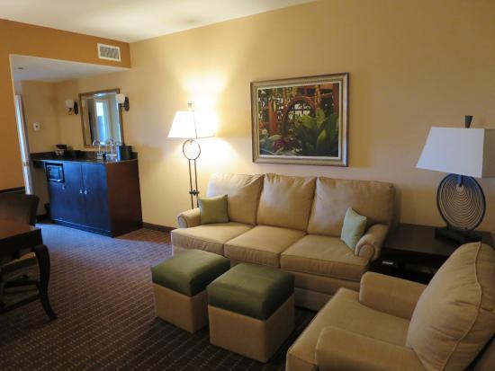 Embassy Suites by Hilton Orlando Lake Buena Vista South: Living-Room, Room 925