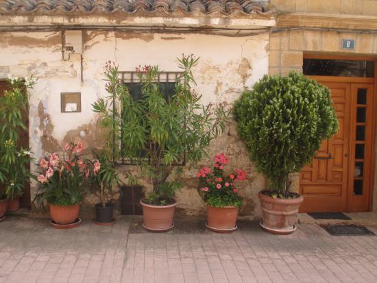 Carpe Diem : View across courtyard from bedroom