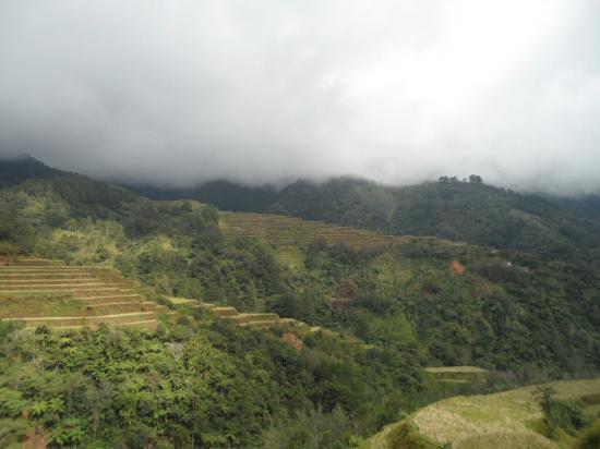 how to go to banaue rice terraces