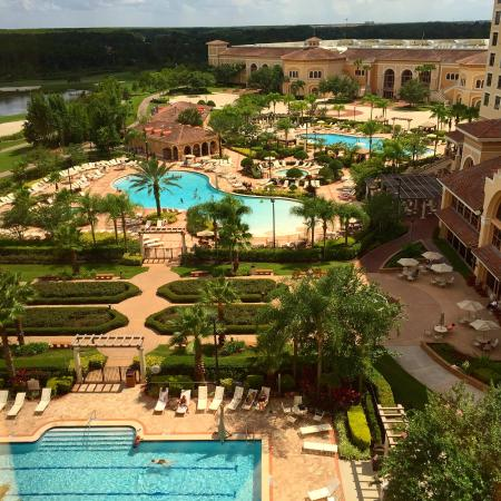 pool view picture of rosen shingle creek orlando. Black Bedroom Furniture Sets. Home Design Ideas