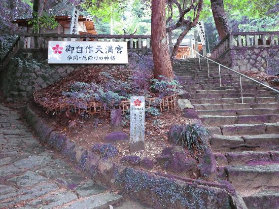 Mt. Tenpaizan