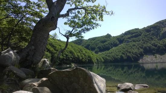 Parco Regionale Valli del Cedra e del Parma