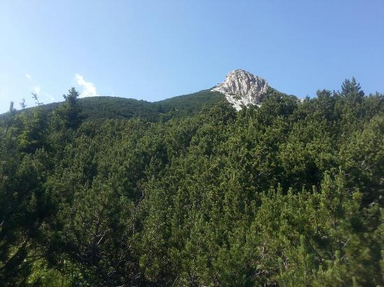 Aldino (Aldein), Italien: Vista da passo Oclini