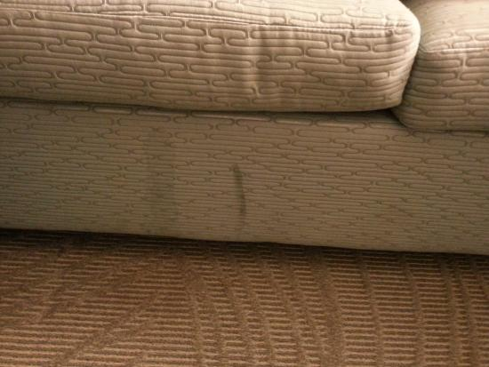 SpringHill Suites Atlanta Buford/Mall of Georgia: Couch stains