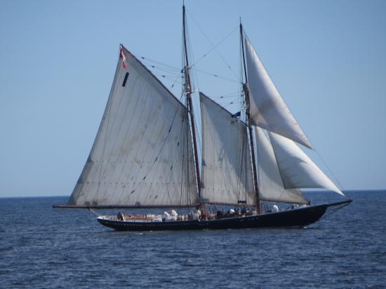 Addington Arms B&B: The Bluenose II on a trading exercise.