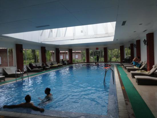 Covered swimming pool - Picture of The Lalit Grand Palace Srinagar ...