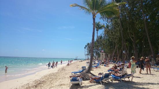 Vista Sol Punta Cana: Praia de Bávaro, em frente ao Resort