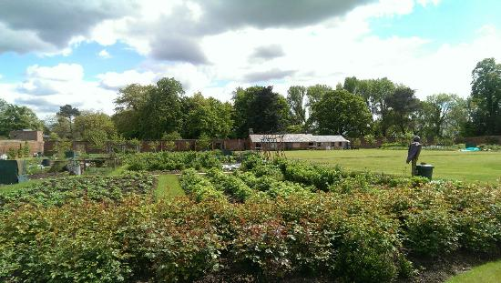 Elford Walled Garden