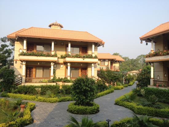 Green park hotel rooms outside - Picture of Green Park Chitwan