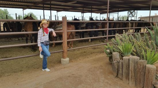 White Stallion Ranch: Coco with horses. So pretty!